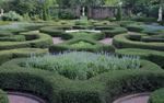 Tryon-Garden