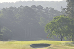 Hole Number 10UGA Golf CourseApril 2016