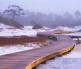 Watersound developmentalong Florida Highway 30A