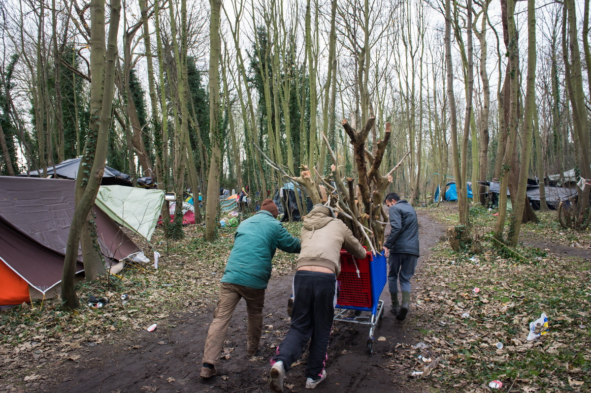 Calais, December 2014 Migrants haul firewood to their shelters in the camp known as the Pakistani jungle.
