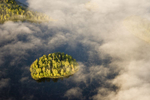 Aerial images of the fall leaves along the Susitna river, Alaska