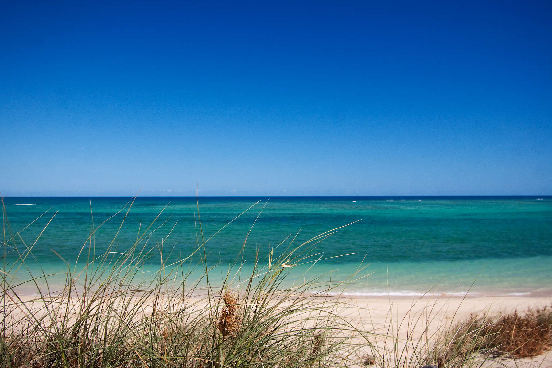 WA_Beach_Landscape