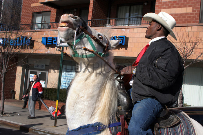 A cowboy whistles at onlookers in Astoria, Queens during a Chinese New Year parade.--The Federation of Black Cowboys is a nonprofit fraternal organization headquartered at a ranch straddling the Brooklyn- Queens line in New York City. As a 501(c)3 organization, they {quote}seek to create greater understanding of African American culture and heritage{quote} and {quote}endeavor to provide educational opportunities for the young public of New York.{quote} There are around 35 Federation members, all committed to keeping alive the history of African Americans like Nat Love, Bill Pickett, and Stagecoach Mary Fields in the old West.Federation membership ranges from former insurance salesmen and city transit workers to former rodeo stars and rural transplants. Founded in 1994, the organization is headquartered at Cedar Lane Stables in Howard Beach, Queens. One of the ways in which the Federation engages with the community is through a Saturday program for at-risk youth. Each Saturday for an entire semester, a class of students is bussed to the ranch to attend mandatory educational sessions with topics ranging from respect and self-esteem to horse care and riding. Most of the program's participants have never seen a horse in person before, let alone touched or rode one.