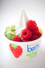 berryline-sample-frozen-yogurt