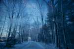 cold-country-road-winter