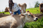 girl-pet-cow