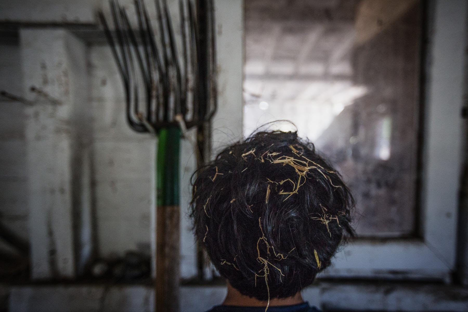 hay-hair-barn