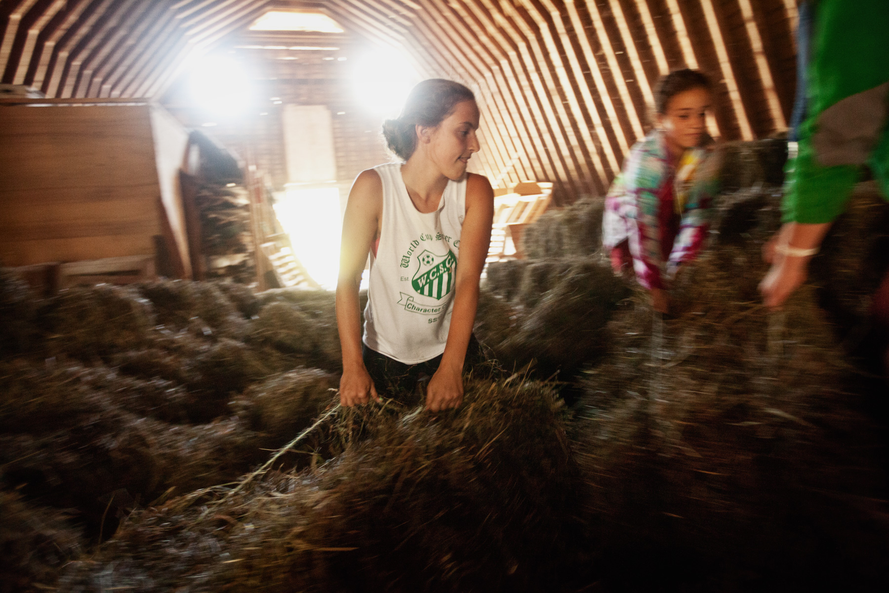 stacking-hay-girl