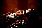 wine-selection-vineyard