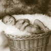 newborn20120609003-2