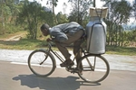 Taking milk to market, Rwanda