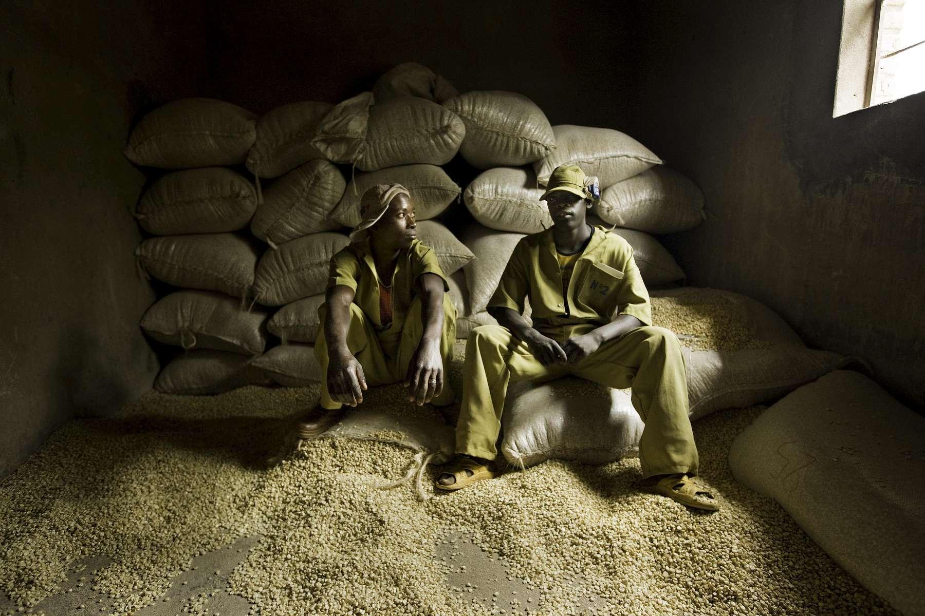 Corn millers, Nyaconga, Rwanda