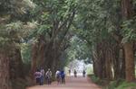 Masaka, Rwanda