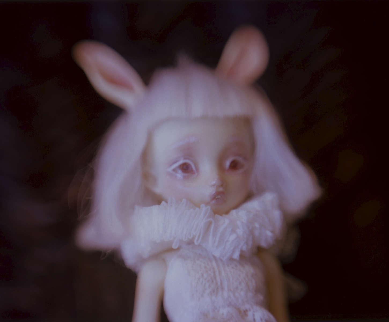 Bunny01350