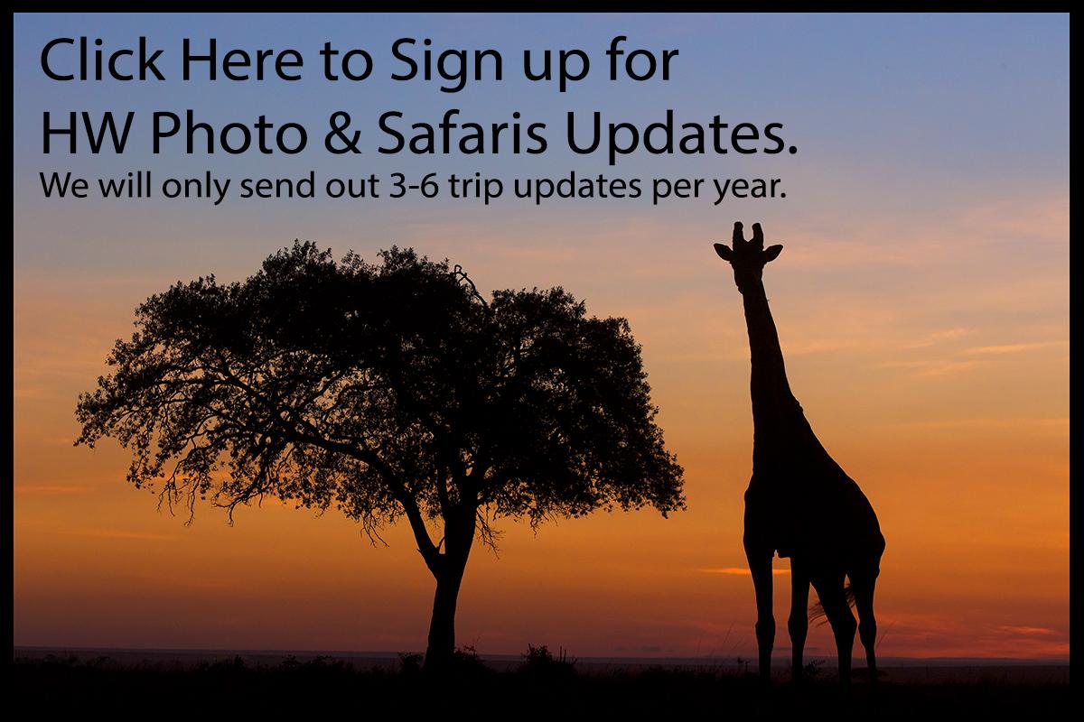 HW Photo & Safaris Sign Up