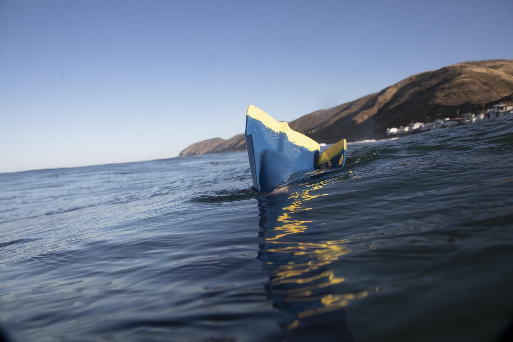 surfers-aug2020-44