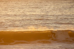 surfers-aug2020-8