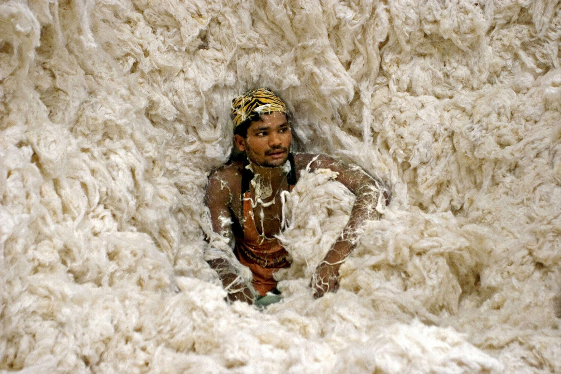 17.07.06. Usine de coton, Gore kunta, Warangal, Andhra Pradesh, Inde. ici, troisième étape : le coton est sorti des sac pour être compressé. Les ouvriers sont payés au rendement (52 roupies par sacs de coton).Le coton sera ensuite exporté dans d'autres régions de l'Inde (ex: Bengale) ou vers l'étranger (Bangadesh, Etats-Unis, Chine, Australie....) pour la confection de vêtements.