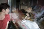 Ilyna est née le 18 Mai 2015. La mère d'Amélie, Isabelle, et sa sœur Coralie 12 ans, leur rendent visite. Fourmies, France.