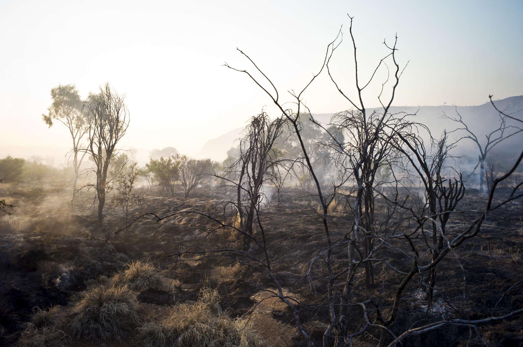 Feu de bush à Undoolya, qui signifie l'ombre de l'aile de l'aigle. Alice Springs, TN, Australie, 2011.