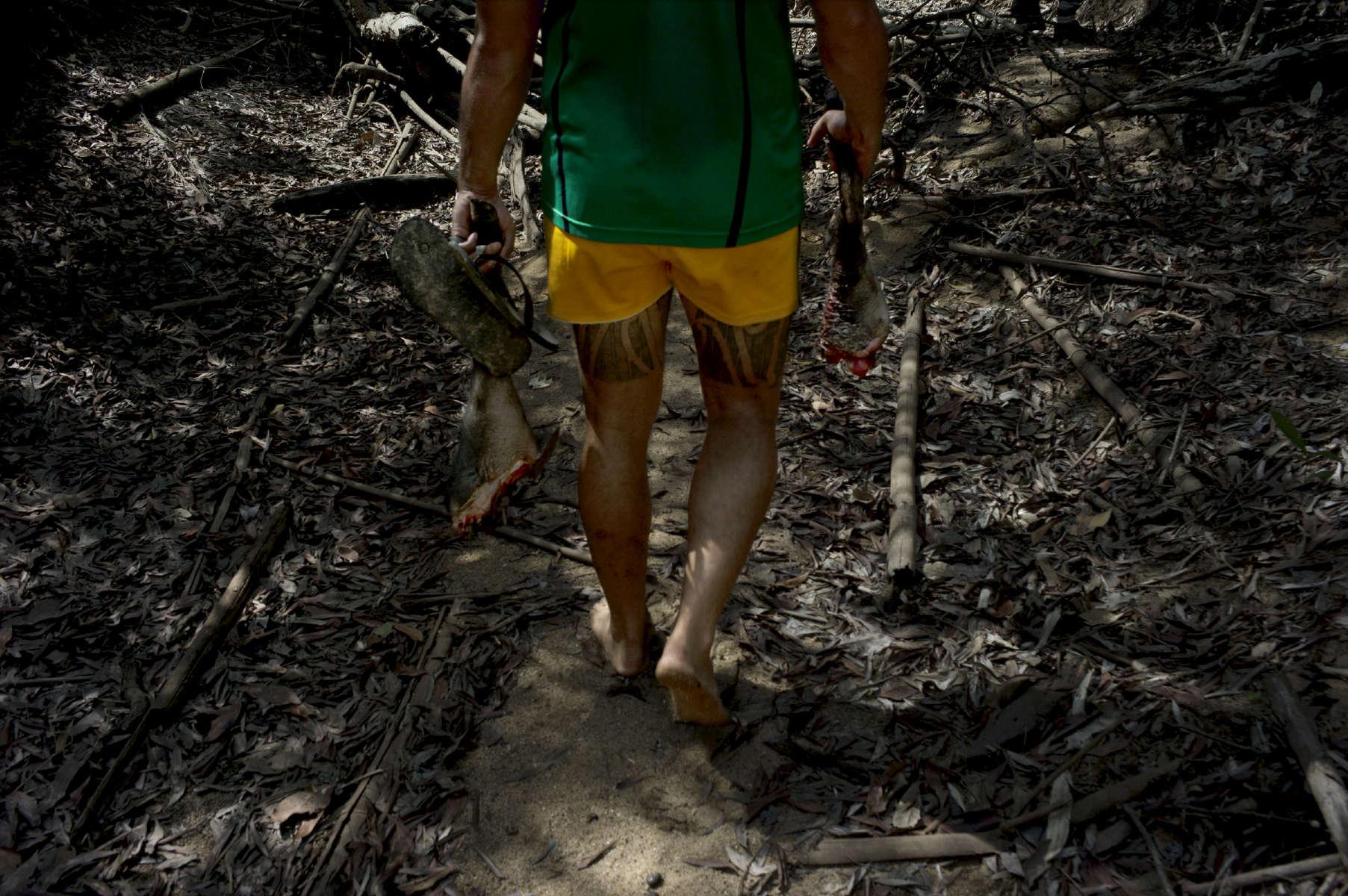 Jour de chasse,  Wetland, près de Darwin, TN, Australie, 2011.