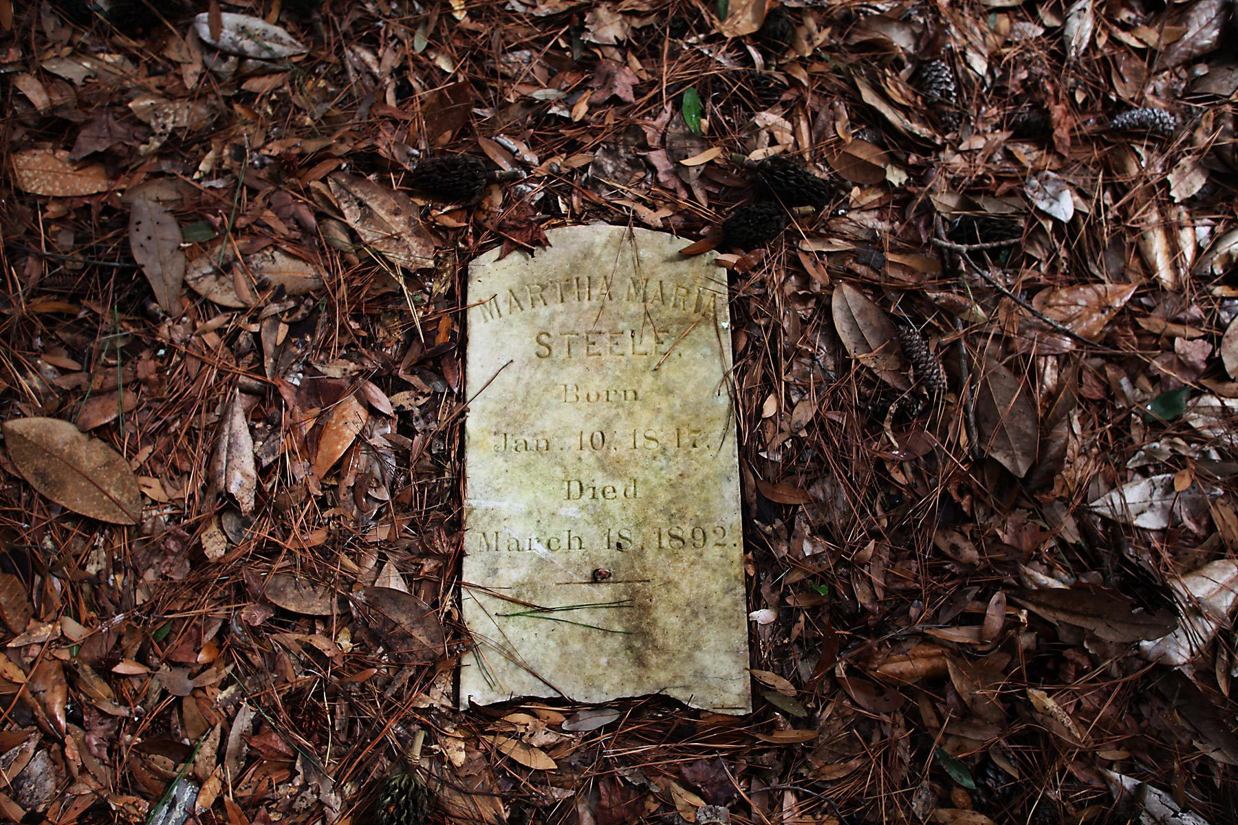 The gravestone of Martha Maria Steele, who died in 1892, is framed in fallen leaves and brush at the slave cemetery February 17, 2012, at Friendfield Plantation in Georgetown, S.C. The cemetery is located in an open area near the marsh and about a quarter mile from the old slave quarters on the plantation. The plantation contains 3264 acres of land and has a selling price of $20 million. In the South Carolina Lowcountry, more than a half-dozen antebellum plantations, which don't change hands often, are for sale.  REUTERS/Randall Hill