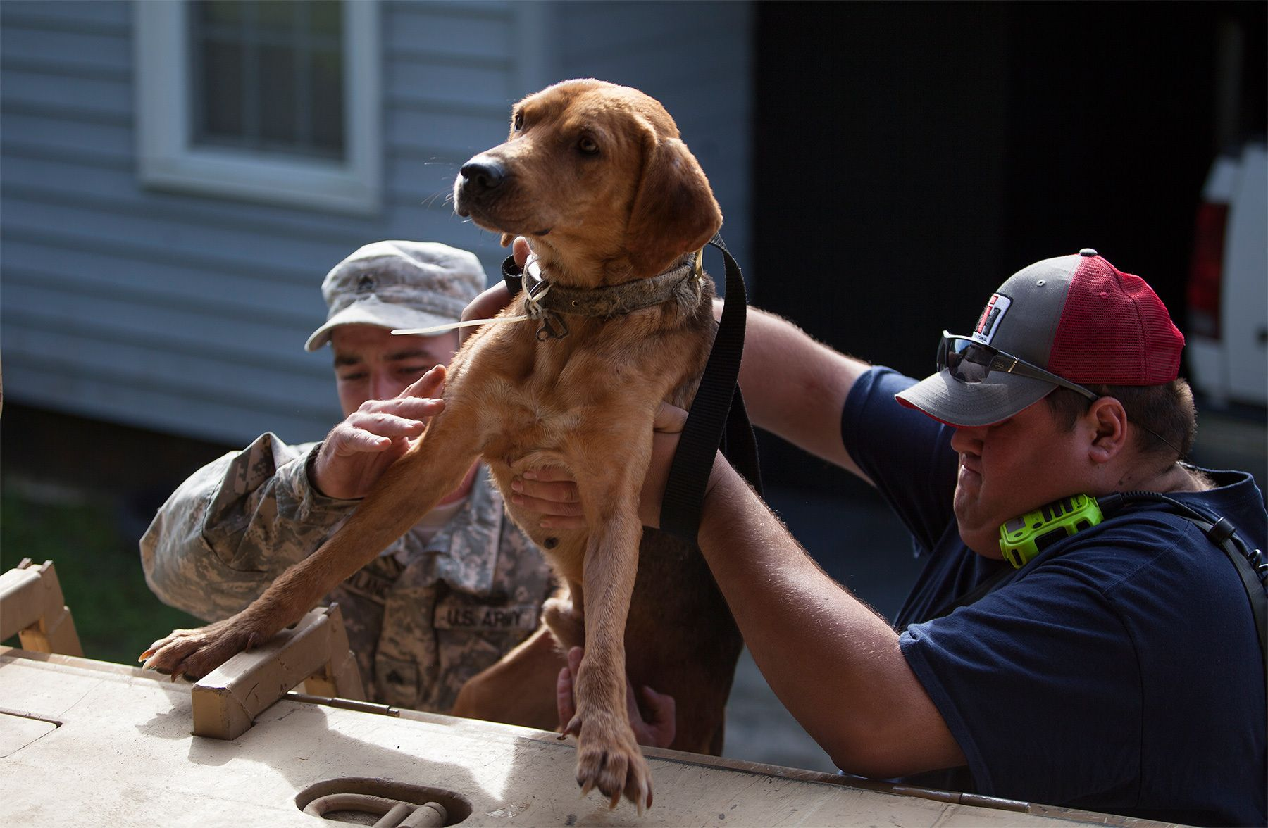 Sgt. William Roland (L) of the SC National Guard and Mason Caudle of the Georgetown Fire Department, rescue a lost dog in Georgetown, South Carolina October 9, 2015. Concerns about additional inundation in four coastal counties and more rain had officials on guard Friday, nine days after a state of emergency was declared because of historic rains that washed out roads, swamped hundreds of homes and killed 17 people in the state. Emergency management officials in several areas were encouraging residents to leave their homes as a precaution as floodwaters flow south into already-swollen rivers and tributaries toward the Atlantic Ocean.  REUTERS/Randall Hill