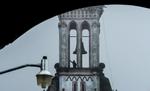 Guadalupe_Pilgrimage5